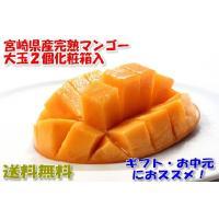 近年、東国原元知事のおかげで大ヒットしている、宮崎県産完熟マンゴーです。 容量:2個入 約700グラ...