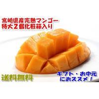 近年、東国原元知事のおかげで大ヒットしている、宮崎県産完熟マンゴーです。 容量:2個入 約900グラ...