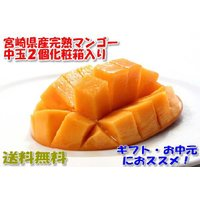 近年、東国原知事のおかげで大ヒットしている、宮崎県産完熟マンゴーです。 容量:2個入 約500グラム...