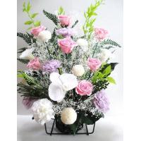 生花と見間違うほどの美しさ、胡蝶蘭入り100%プリザで高さ45センチの豪華プリザーブドフラワーのお供...