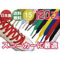 靴ひも 靴紐 スニーカー コンバース ナイキ 1足2本入 石目平(シューレース) 120cm 【10】