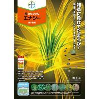カウンシルエナジー1キロ粒剤 1kg|agrimart|02