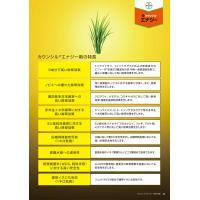 カウンシルエナジー1キロ粒剤 1kg|agrimart|04