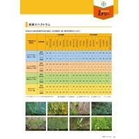 カウンシルエナジー1キロ粒剤 1kg|agrimart|05