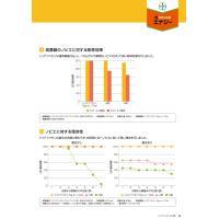 カウンシルエナジー1キロ粒剤 1kg|agrimart|07