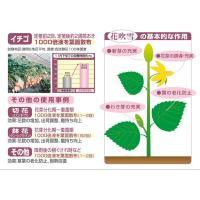 花芽促進剤 花吹雪 1リットル|agrimart|04