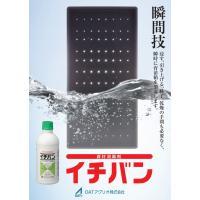 資材消毒剤イチバン 500ml|agrimart|02