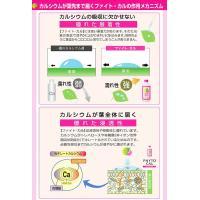 カルシウム補給に ファイト・カル 1リットル|agrimart|02