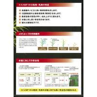 トドメMF1キロ粒剤 1kg|agrimart|05