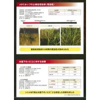 トドメMF1キロ粒剤 1kg|agrimart|08