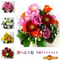 オープン記念激安、選べる生花ギフト ★アレンジメント、カラー5色  ※サイズ 高さ 約25cm 幅2...