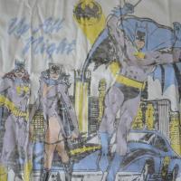 ジャンクフード Tシャツ メンズ 半袖 バットマン バットガール オフホワイト JUNKFOOD JUNK FOOD Batman D3419-7730 Sugar 5122
