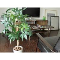 光触媒 観葉植物 パキラ 人工観葉植物 お手入れ不要 インテリア
