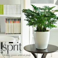 光触媒 観葉植物 V-CAT スプリット インテリア おしゃれ 消臭 防菌 光触媒人工植物