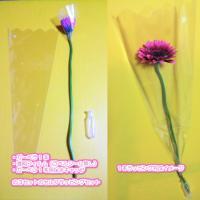 ガーベラの花1本をセルフラッピング(自分で作る個包装) 保水キャップ付き (ラベルシール無し)【卒業式・結婚式・イベントなどのプチギフトに】