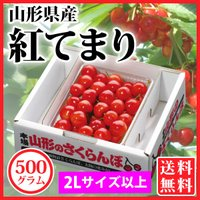 「紅てまり」は、紅秀峰の後に出回る晩生種のさくらんぼで、大粒で食味も濃厚なことから、最高級ギフト品と...