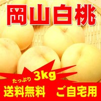 【送料無料】【ご自宅用】『岡山白桃物語』岡山白桃約3kg約10〜15玉