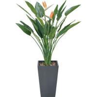(人工観葉植物)アートスレリチアポット(花付) 160cm×90cm / 造花・インテリア・ディスプレイ・グリーン・ゴクラクチョウカ・極楽鳥花