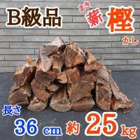 【B級品】薪(樫・カシ)長さ36cm 約20kg 〜曲がり・虫喰い〜