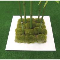 人工竹ツリー 苔付き 180cm (青竹 グリーン 造花 インテリア 人工観葉植物 1.8m)