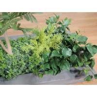 ネムノキのガーデニングセットGY(造花 人工観葉植物 インテリア 庭 エバーフレッシュ)