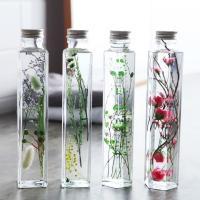 Healing Bottle ハーバリウム/植物標本