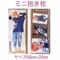 両面に写真がプリントされた枕型のクッションです。 肌ざわりの気持ち良い布製カバーと中身付き。 カバー...