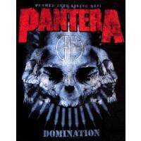 【メール便対応可】PANTERA  パンテラ  DOMINATION DISTRESSED  オフィシャルバンドTシャツ
