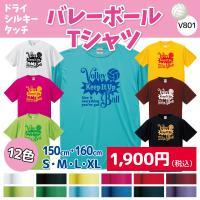 バレーボール Tシャツ ドライシルキー ウェア 練習着 チーム クラブ 全12色  V801 送料無料 5088