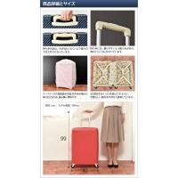 スーツケース キャリーバッグ ハント マイン 75L トラベル2大特典