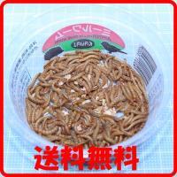 送料¥350 ポスト投函 川井ミルワーム 1パック(150匹位)詰め替え梱包(トカゲの餌、ヤモリのエサ、カエルの餌)(爬虫類 両生類 生えさ 餌)