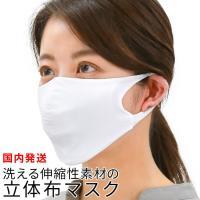 マスク 夏用 洗える 在庫あり 涼しい 小さめ 大きめ 子供 水着 布マスク おしゃれ あり