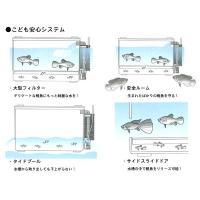 日本動物薬品 産卵・飼育ケース ベビーボックス・プラス|aquatailors|05