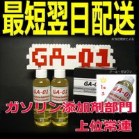 ガソリン添加剤 GA-01 タービュランス GA01 GA 01  燃料系強力洗浄 ガソリン車専用ケミカル カーメンテナンス ga01 ga 01 国産車・外車・輸入車もOK