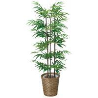 光触媒 観葉植物 人工観葉植物 黒竹 (幹/天然黒竹) 高さ120cm フェイクグリーン 消臭 抗菌 防汚