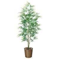 人工観葉植物 光触媒 観葉植物 フェイクグリーン インテリア 人工植物 高さ170cm 青竹 消臭 抗菌 防汚