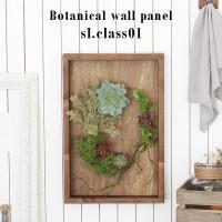 光触媒 壁掛け 植物 木製 額 ウォールパネル 造花 フェイクグリーン 観葉植物 ディスプレイ アートパネル Botanical sl.class 01
