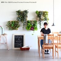 光触媒 フェイクグリーン 壁掛け グリーンパネル 壁面 装飾 パネル ボード 人工観葉植物 壁面緑化 造花 Botanical a.class 20