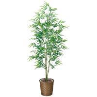 光触媒 観葉植物 人工観葉植物 青竹 高さ180cm 光触媒観葉植物 フェイクグリーン 消臭 抗菌 防汚