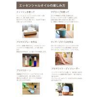 アロマオイル セット 選べる10mlx5本 30種(真正ラベンダー、ティーツリーなど)から 送料無料 (エッセンシャルオイル 精油) AEAJ表示基準適合認定精油|aroma-ash|06