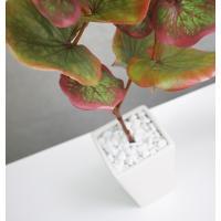 人工観葉植物 ユーカリのホワイトポット 光触媒を超える消臭効果 造花