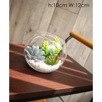 人工観葉植物 多肉植物のガラスポット 男前インテリアを演出 造花 ミニ多肉植物 光触媒を超える消臭効果 造花 人工観葉植物 ミニ多肉植物 テーブルアート
