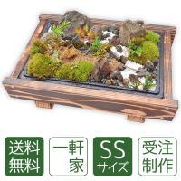 【北海道・沖縄は送料500円】※木の種類が変更になる場合もあります。※天然素材のため写真と若干異りま...