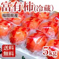 長期保存可能な冷蔵ふゆう柿です。  おせち、お正月のおもてなしに最適の冨有柿です。  内容量/約5k...