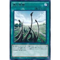 通常魔法【レア】 「竜の霊廟」は1ターンに1枚しか発動できない。 (1):デッキからドラゴン族モンス...