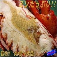 カナダ産ボイルオマールエビ1尾(300~350g) おまーる ろぶすたー ロブスター えび 海老 エビ