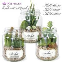 KISHIMA キシマ エクリア 消臭アーティフィシャルグリーン KH-61020 21 22 多肉植物 ボトル 寄せ植え サボテン CT触媒加工 抗菌 防汚 消臭 造花