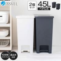 ゴミ箱 キッチン エバン ペダル スリム 45リットル SD 2個 セット アスベル ASVEL EBAN 分別 おしゃれ 45l 45L 大容量 蓋付き 資源ゴミ ごみ箱