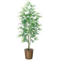 光触媒 観葉植物 造花 グリーン インテリア おしゃれ 青竹