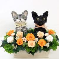 アメリカンショートヘアと黒猫のトピアリープリザーブドフラワーアレンジです。 動物病院開院祝いや猫カフ...